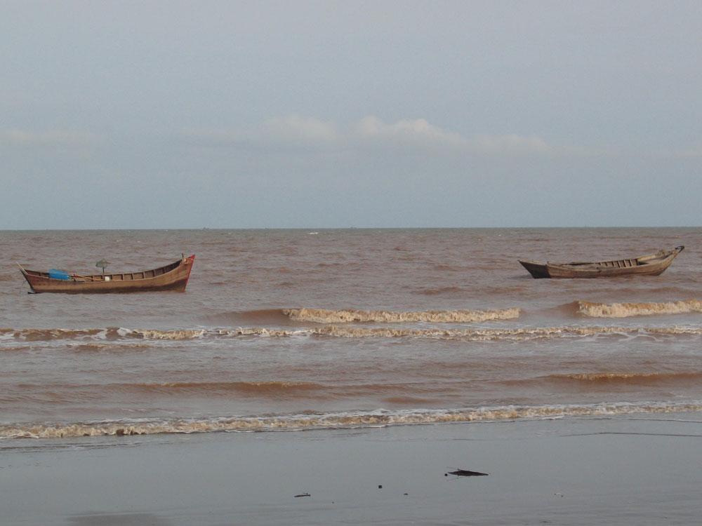 Mer marron dans le delta du Mékong