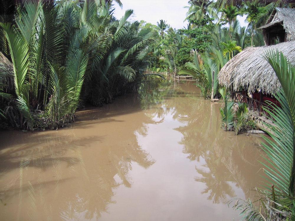 Rivière boueuse dans le sud du Vietnam