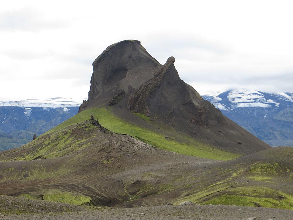 Tortue géante en Islande