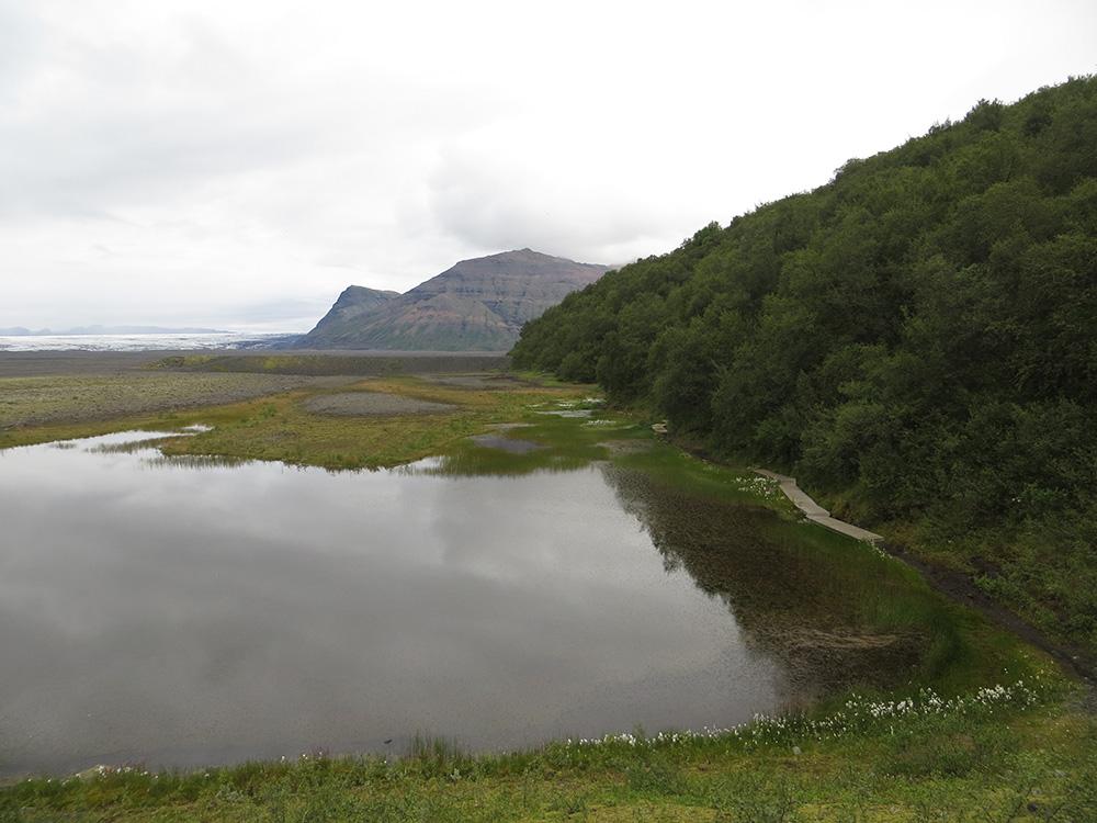 Randonnée Skaftafell en Islande