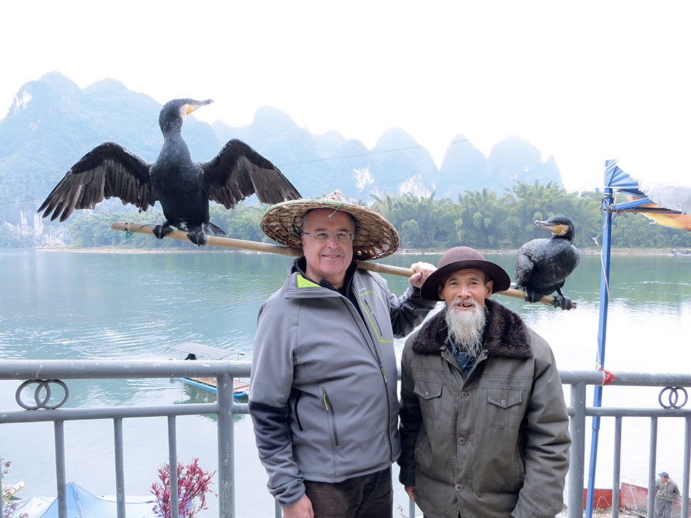 cormorans guilin chine