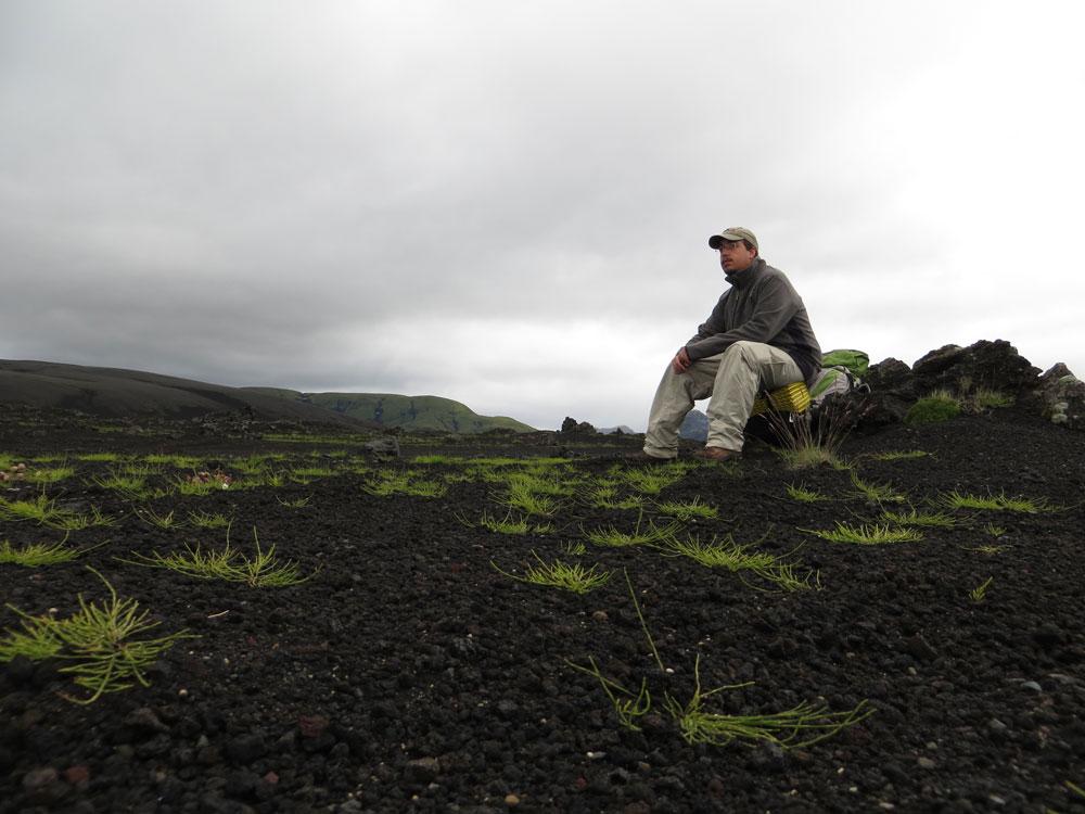 Autostop Islande