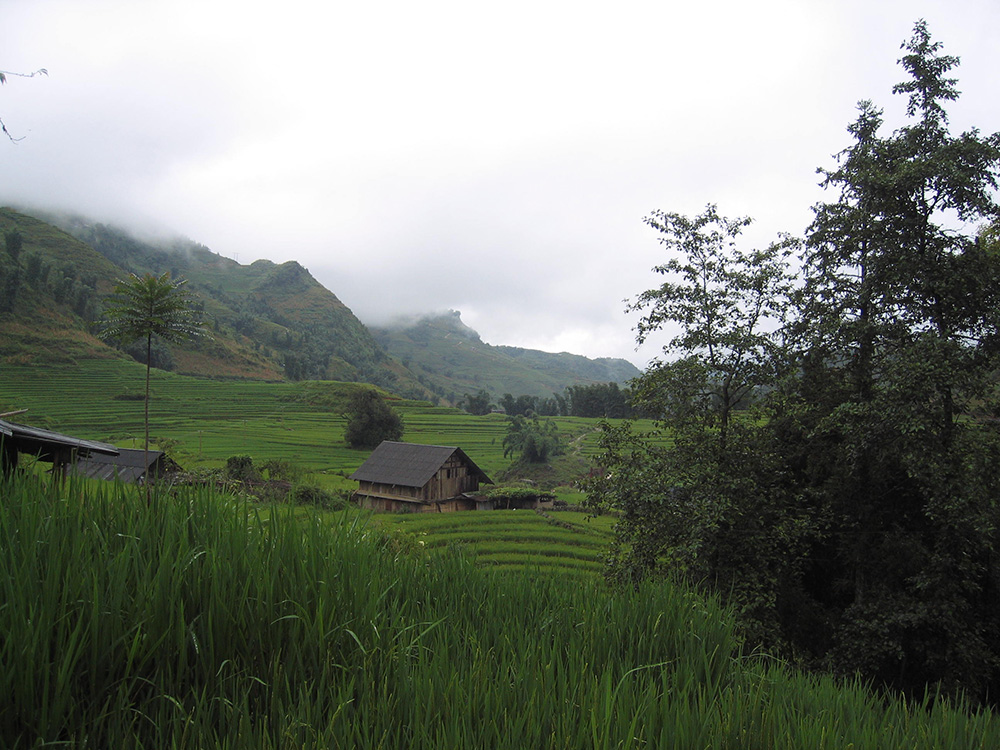Brume sur les montagnes au Vietnam