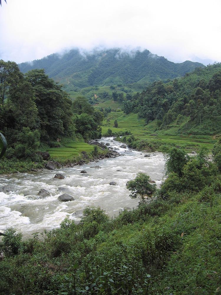 Rivière descendant de la montagne