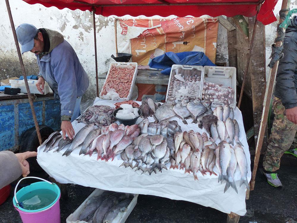 Etal de poissons au Maroc