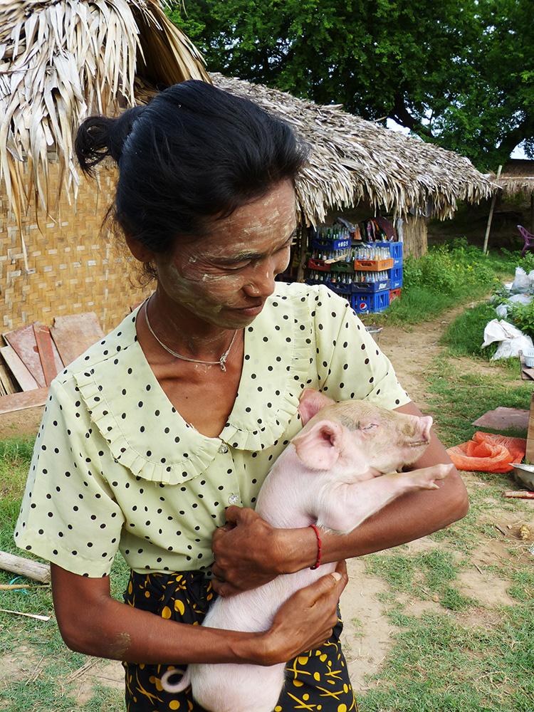 Fermière birmane